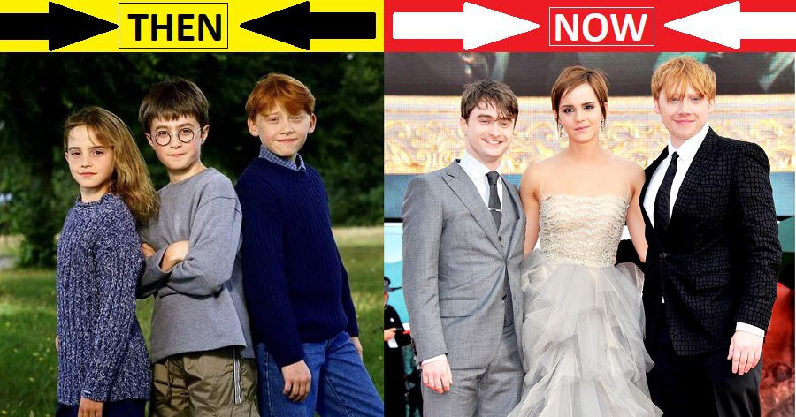 Harry Potter Cast Now After 19 Years